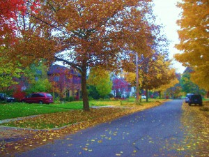 Traditional street view of East Grand Rapids