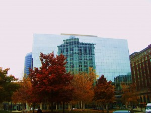 Building reflection at Rosa Parks Circle in downtown Grand Rapids